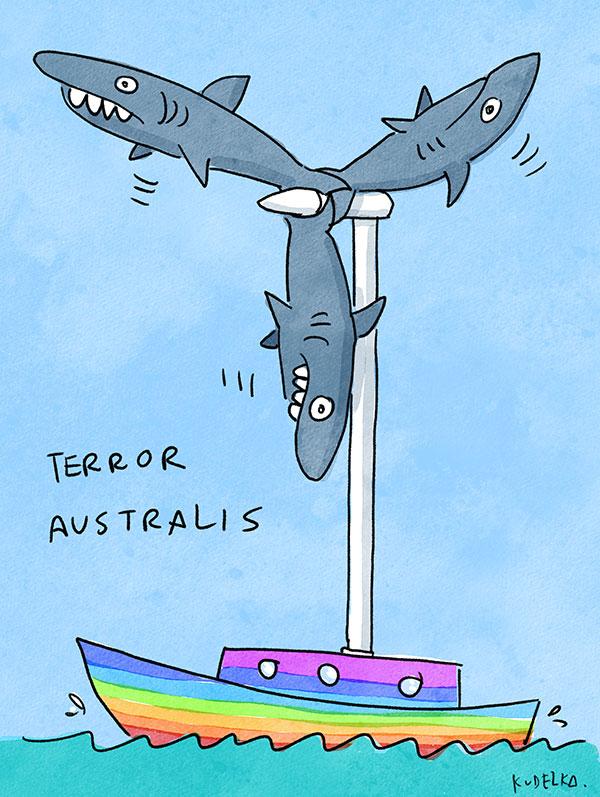 sharkturbinelo